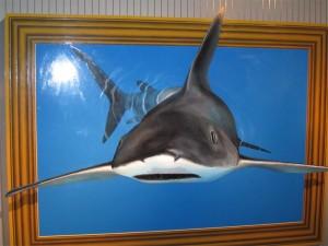 サメのトリックアート